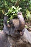 Éléphants et humains Photo libre de droits