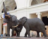 Éléphants iconiques Photo libre de droits