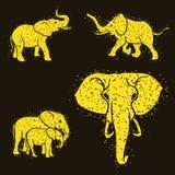 Éléphants réglés illustration stock