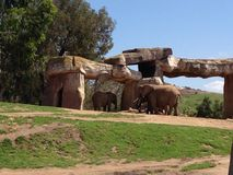 Éléphants sous la formation de roche image libre de droits