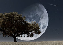Élévation de lune illustration de vecteur