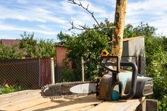 Électrique a vu dans le jardin Photo libre de droits