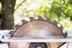 Électrique a vu l'outil de table pour le boisage avec l'espace libre Photos libres de droits
