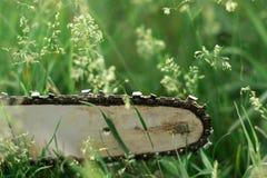 Électrique a vu sur l'herbe de pelouse Photo libre de droits