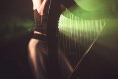 Électro harpe dans les rayons de la lumière Photo stock