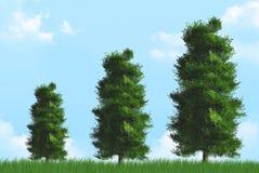 Élevage d'arbres Photo stock