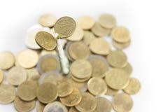 Élevage d'argent Image libre de droits