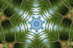 Élevage d'houblon Image stock