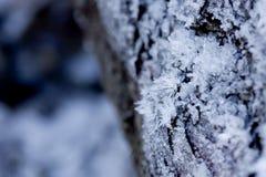 Élevage de cristaux de glace sur une surface en bois Photographie stock