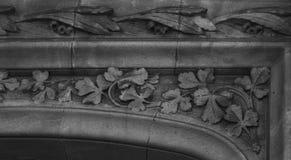 Élevage de feuilles Images stock