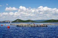 Élevage de poissons aquiculture Image libre de droits