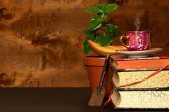 Élevage domestique de café Cuvettes de café et grains de café frais autour Jeunes arbres de café sur la table Centrales croissant Image libre de droits
