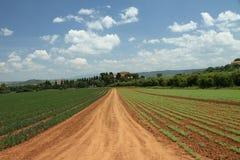 Élevage en Toscane Images stock