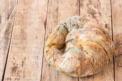 Élevage rapidement sur le pain moisi Photos stock