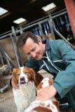 Éleveur choyant des chiens de chasse Images libres de droits