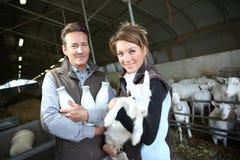 Éleveurs gais tenant une chèvre et des bouteilles de lait Photos stock