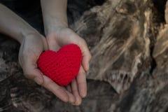 Élevez l'amour avec le plan rapproché de nature Images stock
