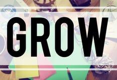 Élevez le concept d'augmentation d'amélioration de développement de croissance Photo stock