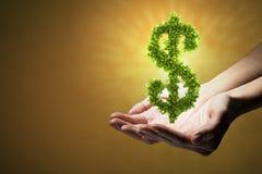 Élevez votre revenu Image libre de droits