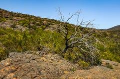 Élevez-vous jusqu'au dessus d'un sommet de roche Photographie stock