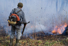 Élimination de l'incendie de forêt 45 Photographie stock libre de droits