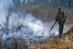 Élimination de l'incendie de forêt 47 Images stock