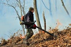 Élimination de l'incendie de forêt 60 Photo libre de droits