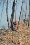 Élimination de l'incendie de forêt 62 Photo libre de droits