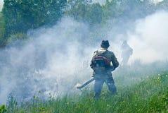 Élimination de l'incendie de forêt 73 Images libres de droits