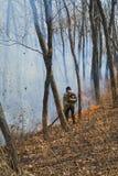 Élimination de l'incendie de forêt 87 Photographie stock libre de droits