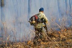 Élimination de l'incendie de forêt 92 Photos stock