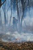 Élimination de l'incendie de forêt 96 Images libres de droits