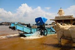 Élimination de plante aquatique dans l'udaipur Images libres de droits