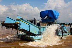 Élimination de plante aquatique dans l'udaipur Images stock