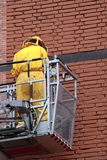 Élimination des abeilles Image libre de droits