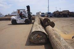 Élimination des faisceaux en bois Photographie stock libre de droits