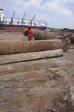 Élimination des faisceaux en bois Images stock