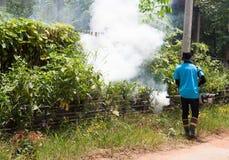Éliminez la maladie transmise par les moustiques Photos libres de droits