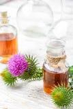 Élixir des herbes médicinales Photos stock