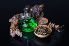 Élixir magique, herbes Photos libres de droits