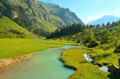 Émeraude de rivière Photos libres de droits
