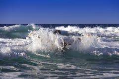 Émergé de la mer Photographie stock