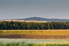 Émetteur de Bratislava Kamzik Photographie stock libre de droits