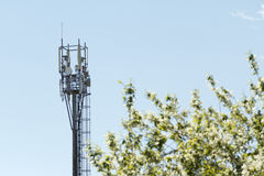 Émetteur de téléphone mobile Image stock