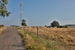 Émetteurs de GSM sur le village Image stock