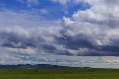 Émeute d'herbe et de nuages frais de ressort Image stock