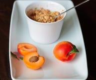 Émiettez-vous avec des abricots Photos stock