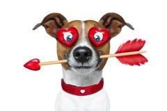 Émoticône ou Emoji fou dans l'amour Photos libres de droits