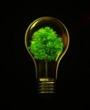 Énergie d'Eco Images libres de droits