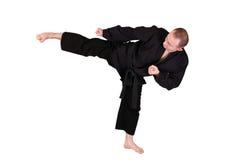 Énergie de côté d'art martial Image libre de droits
